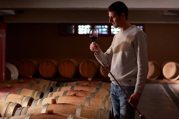 Thierry Ferlay - Cellier des Princes Winemaker